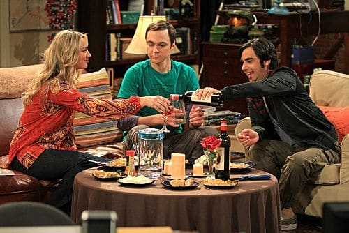 The Big Bang Theory Season 4 Episode 24 The Roommate Transmogrification 291