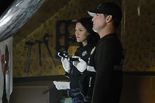CSI Season 11 Episode 22 In A Dark Dark House 12 250