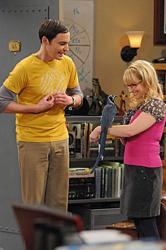 """The Ornithophobia Diffusion"" --Bernadette (Melissa Rauch, right) tries to help Sheldon (Jim Parsons, left) overcome his fear of birds, on THE BIG BANG THEORY, Thursday, Nov. 10 (8:00 - 8:31 PM, ET/PT) on the CBS Television Network. Photo: Michael Yarish/Warner Bros. © 2011 Warner Bros. Television. All Rights Reserved."
