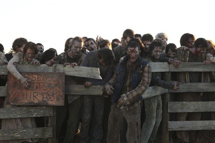 The Walking Dead - Season 2, Episode 13 - Photo Credit: Gene Page/AMC