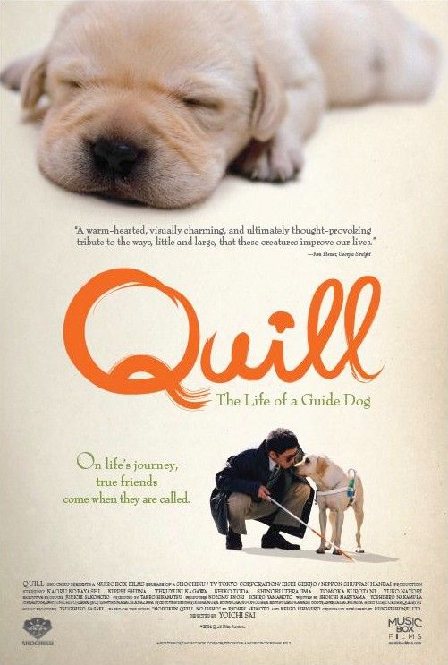 Quill The Life Of A Guide Dog Movie Poster