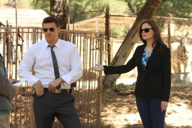 BONES Season 8 Episode 4 The Tiger In The Tale 5