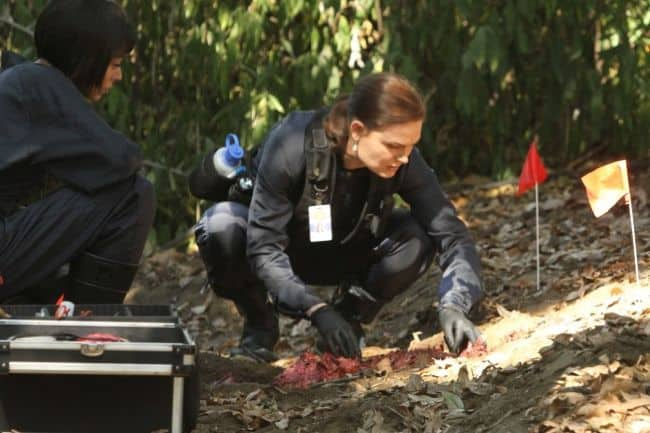 BONES Season 8 Episode 4 The Tiger In The Tale 2