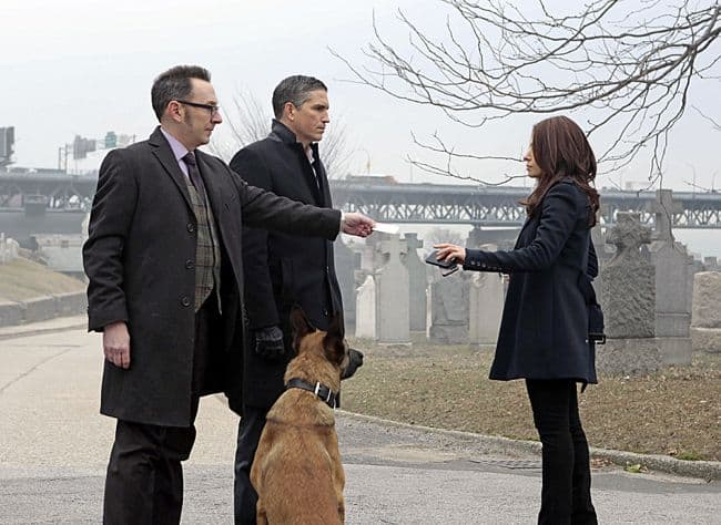 Person of Interest Season 2 Episode 16 Relevance