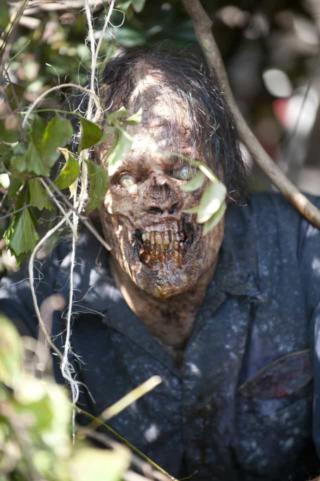Walker - The Walking Dead _ Season 4, Episode 4 - Photo Credit: Gene Page/AMC
