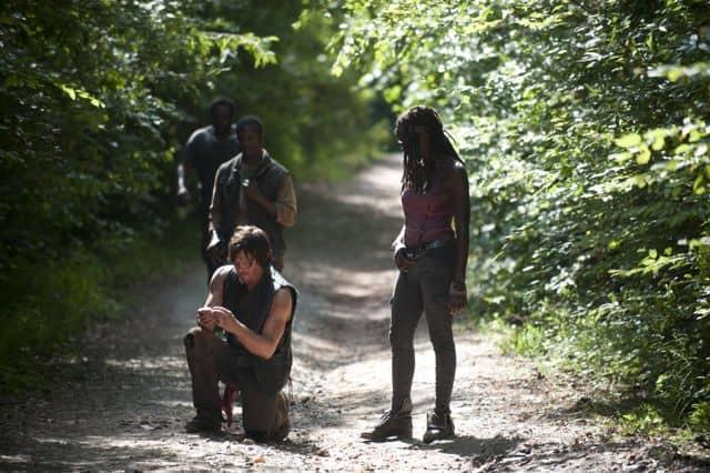 The Walking Dead 31