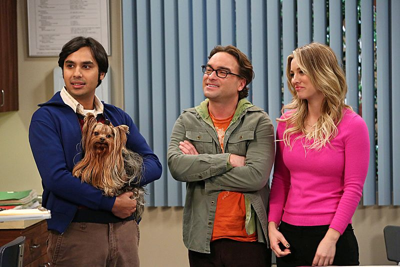 The Big Bang Theory The Locomotive Manipulation