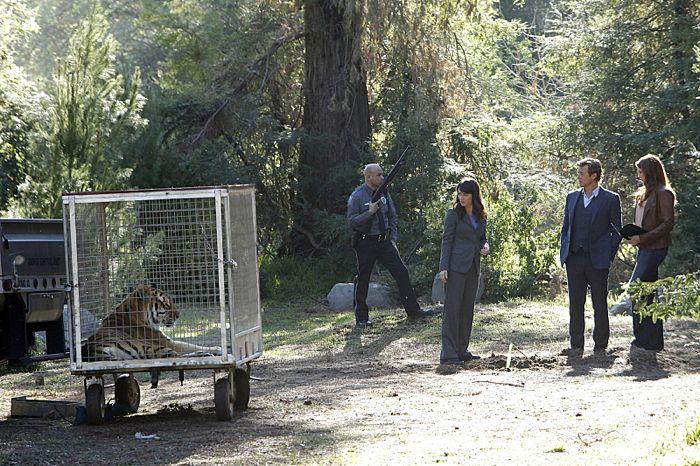 Jane (Simon Baker), Lisbon (Robin Tunney, left) and Van Pelt (Amanda Righetti, right)