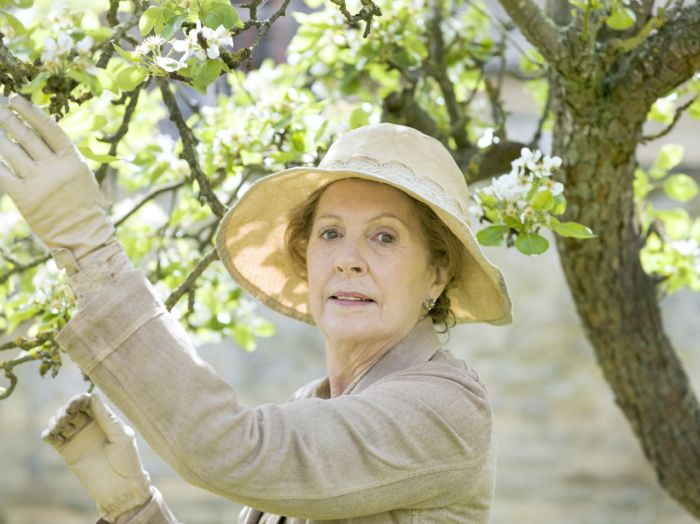 Downton Abbey Penelope Wilton as Isobel Crawley