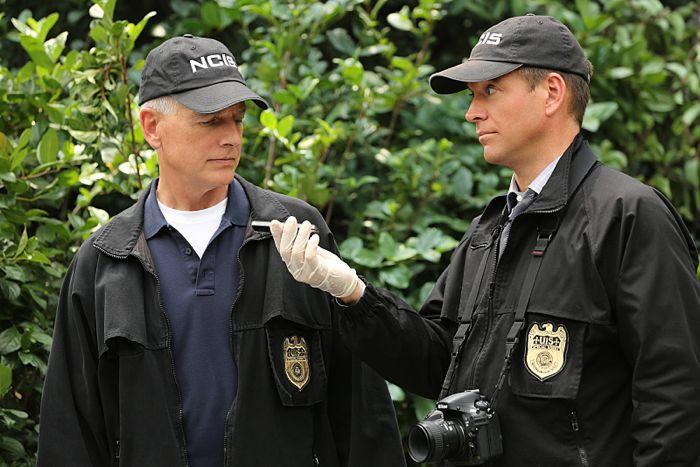 Mark Harmon (left) and Michael Weatherly NCIS Kill the Messenger