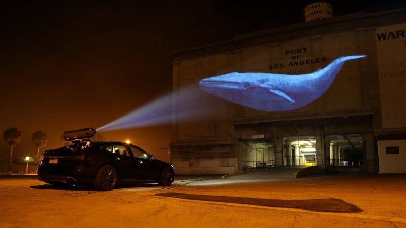 Discovery Channel Racing Extinction