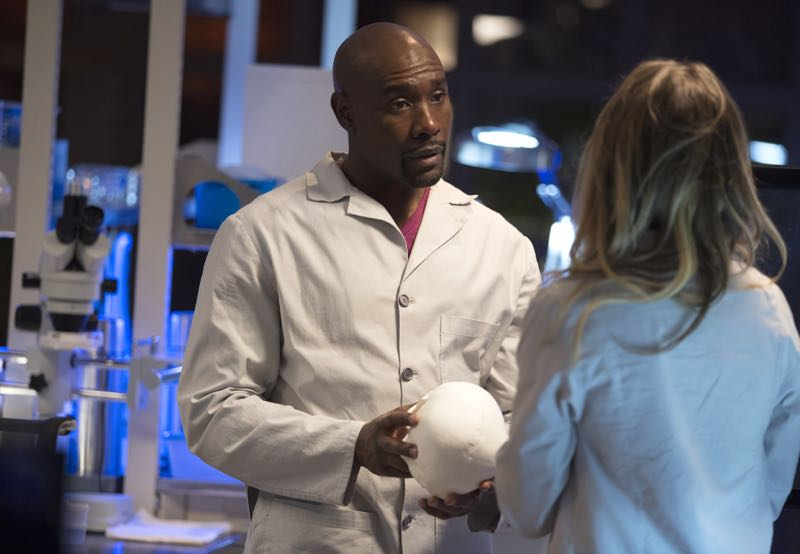 "ROSEWOOD: L-R: Morris Chestnut and Anna Konkle in the ""Policies and Ponies"" episode of ROSEWOOD airing Wednesday, Nov. 4 (8:00-9:00 PM ET/PT) on FOX. ©2015 Fox Broadcasting Co. Cr: John P. Fleenor/FOX."