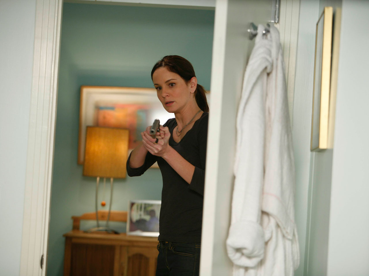 prison-break-Sarah Wayne Callies