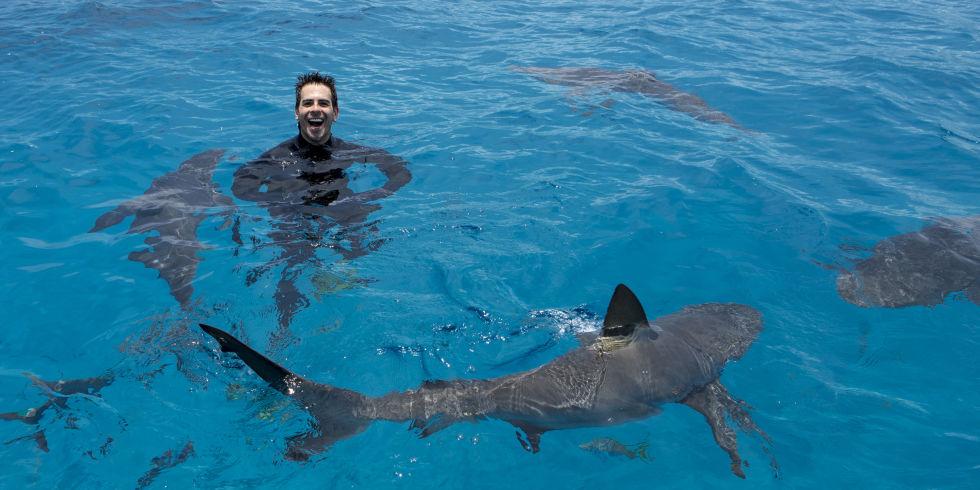 Eli Roth Shark After Dark