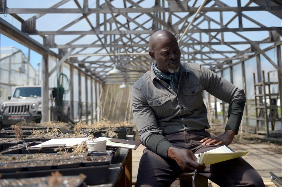 "WAYWARD PINES: Djimon Hounsou in the ""Time Will Tell"" episode of WAYWARD PINES airing Wednesday, July 6 (9:00-10:00 PM ET/PT) on FOX. ©2016 Fox Broadcasting Co. Cr: Sergei Bachlakov/FOX"
