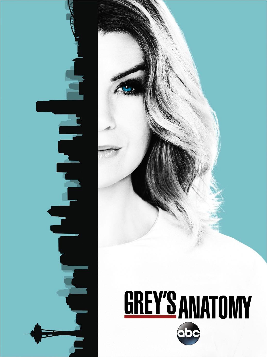 greys_anatomy_season_13_poster