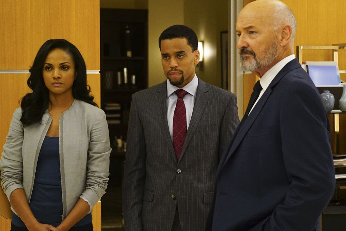 """SECRETS AND LIES - """"The Fall"""" - The explosive power of people's secrets and lies will once again take center stage in season two of ABC's hit drama """"Secrets and Lies,"""" focusing on a brand-new case and a new suspect in another 10-episode thrilling who-done-it, premiering on SUNDAY, SEPTEMBER 25 (9:00-10:00 p.m. EDT), on the ABC Television Network. (ABC/Richard Cartwright) MEKIA COX, MICHAEL EALY, TERRY O'QUINN"""