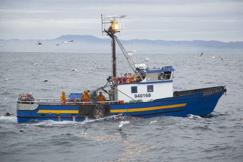 DEADLIEST CATCH: DUNGEON COVE Season Finale Sneak Peek Clip