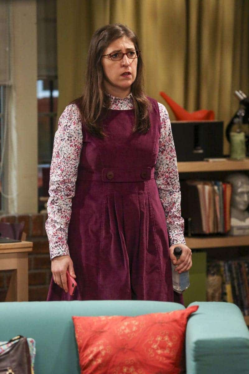 The Allowance Evaporation The Big Bang Theory 14