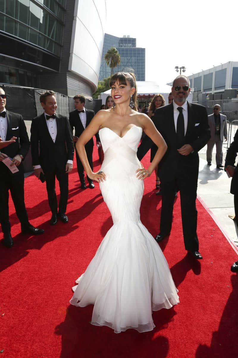 Sofia Vergara arrives on the red carpet at the 69TH PRIMETIME EMMY AWARDS, LIVE from the Microsoft Theater in Los Angeles Sunday, Sept. 17 (8:00-11:00 PM, live ET/5:00-8:00 PM live PT) on the CBS Television Network.   Photo: Mark Davis/CBS ©2017 CBS Broadcasting, Inc. All Rights Reserved.