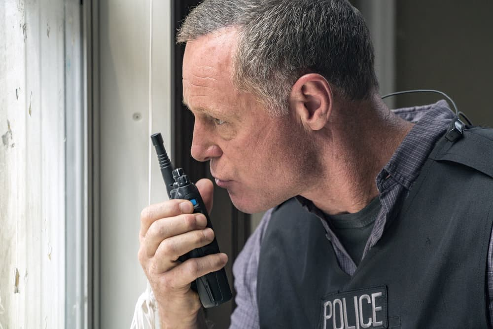 Chicago P.D. - Season 5 Jason Beghe as Hank Voight