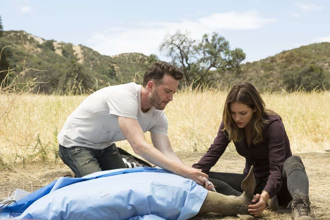 """Grow a Deer, A Female Deer"" -- When poachers almost kill a pregnant endangered deer, Team Scorpion recreates the animal's womb to try to save it and its baby's life. Also, Happy and Toby discuss the future of their family, on SCORPION, Monday, Oct. 9 (10:00-11:00 PM, ET/PT) on the CBS Television Network. Pictured:  Jadyn Wong,  Eddie Kaye Thomas, Katharine McPhee.   Photo: Jessica Brooks/CBS ©2017 CBS Broadcasting, Inc. All Rights Reserved"