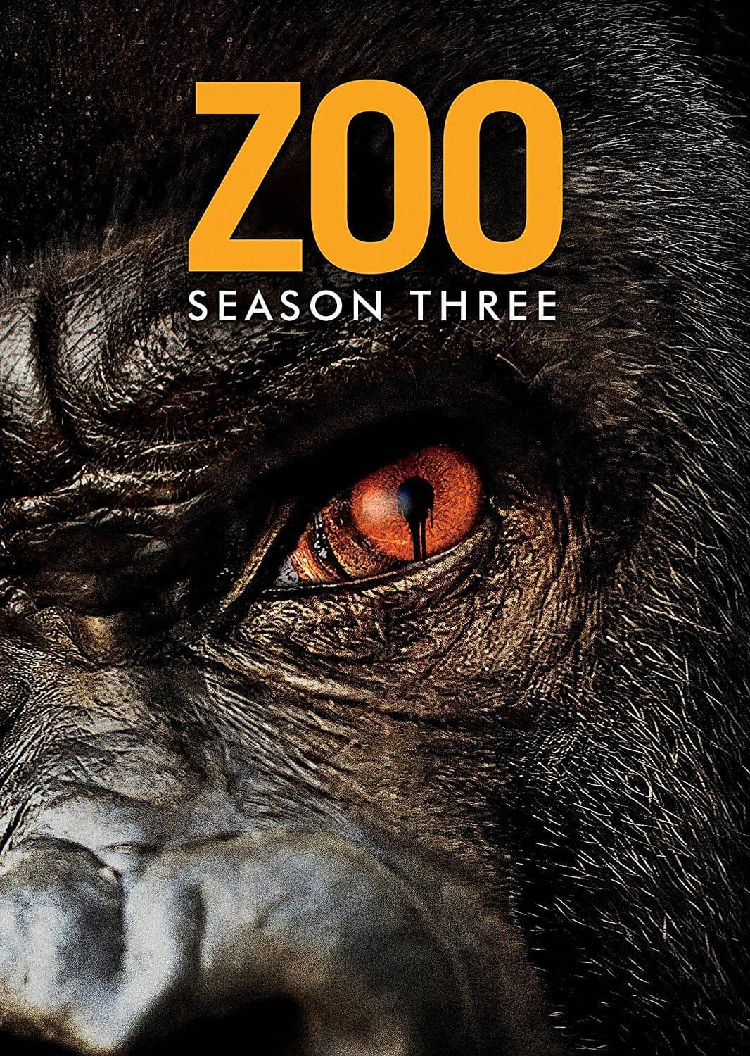 Zoo-Season-3-DVD