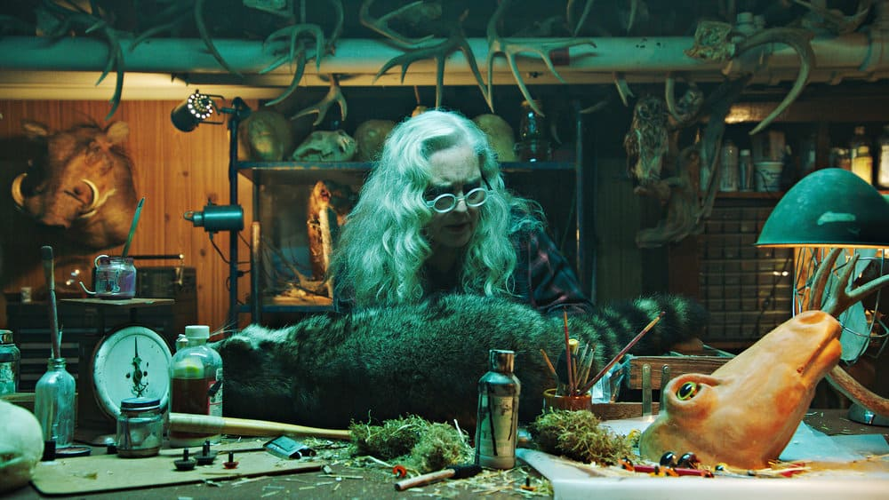 """CHANNEL ZERO: BUTCHER'S BLOCK -- """"Insidious Onset"""" Episode 301 -- Pictured: Krisha Fairchild as Louise Lispector -- (Photo by: Syfy)"""