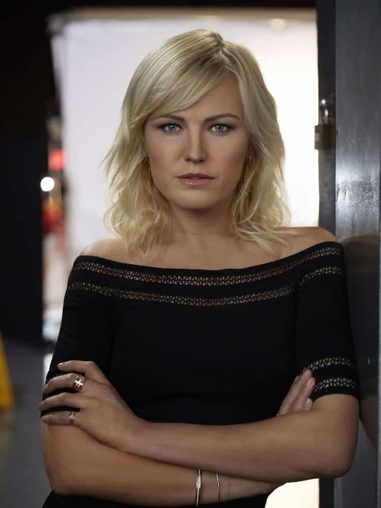 PR Art for Season 3 of the SHOWTIME original series BILLIONS - Photo: Jim Fiscus/SHOWTIME - Photo ID: BILLIONS_S3_singles_lara-0087.R.jpg Pictured: Malin Akerman as Lara Axelrod