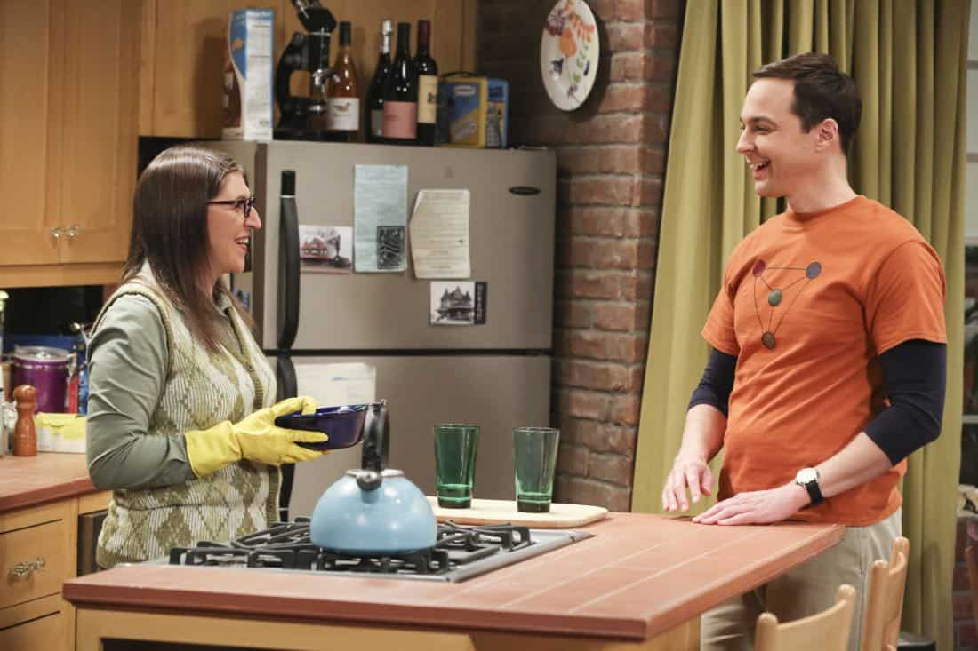 The Big Bang Theory Episode 17 Season 11 The Athenaeum Allocation 03