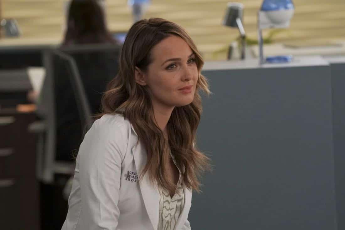 Greys Anatomy Episode 14 Season 14 Games People Play 15
