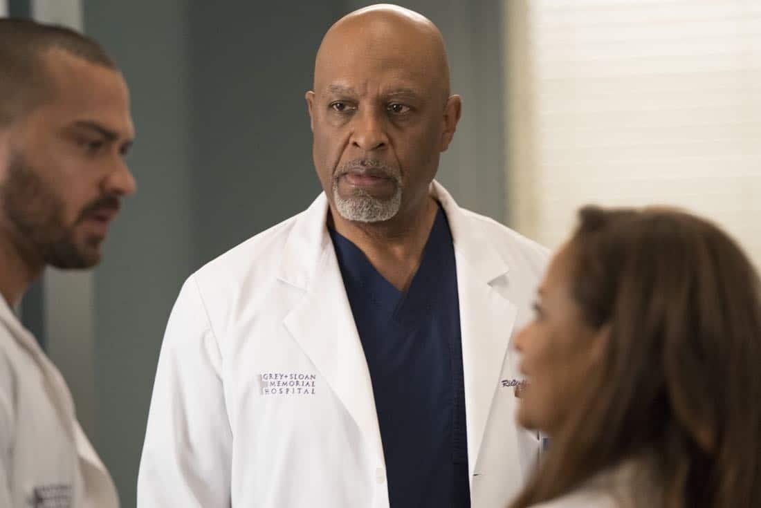 Greys Anatomy Episode 16 Season 14 Caught Somewhere In Time 03