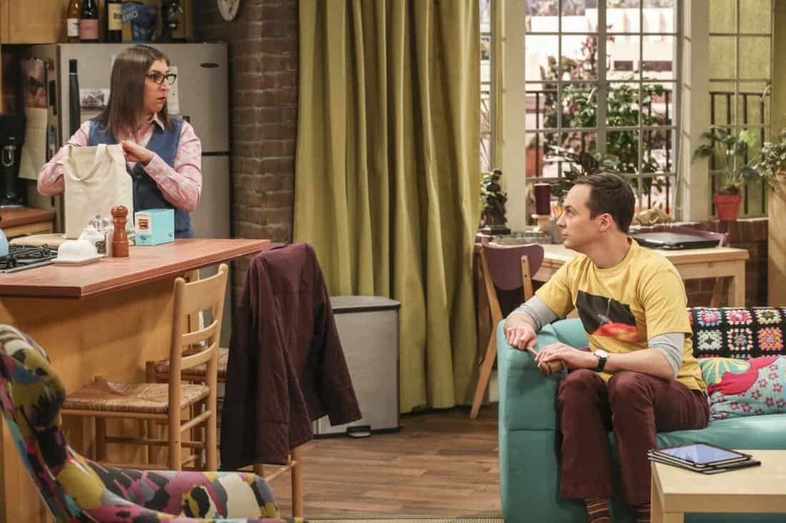 The Big Bang Theory Episode 19 Season 11 The Tenant Disassociation 08