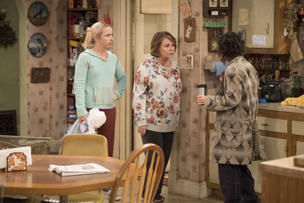 Roseanne Episode 3 Season 10 Roseanne Gets the Chair 07