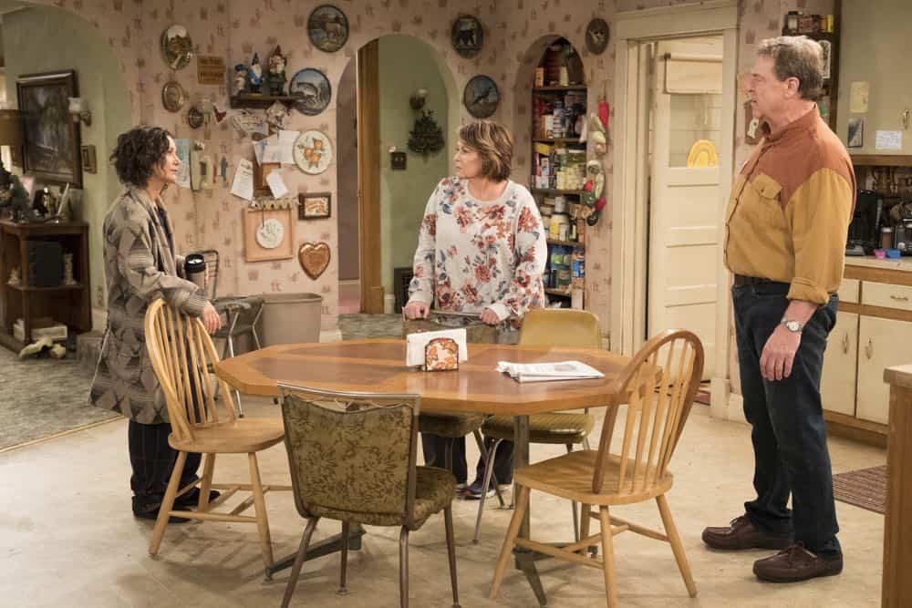 Roseanne Episode 3 Season 10 Roseanne Gets the Chair 08
