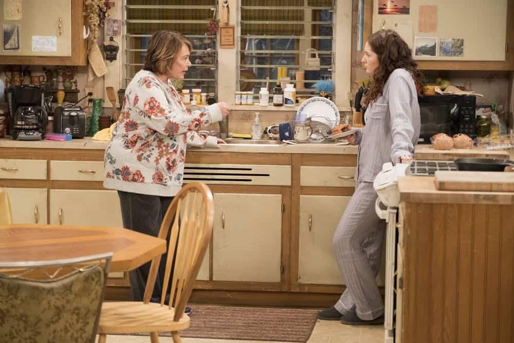 Roseanne Episode 3 Season 10 Roseanne Gets the Chair 21