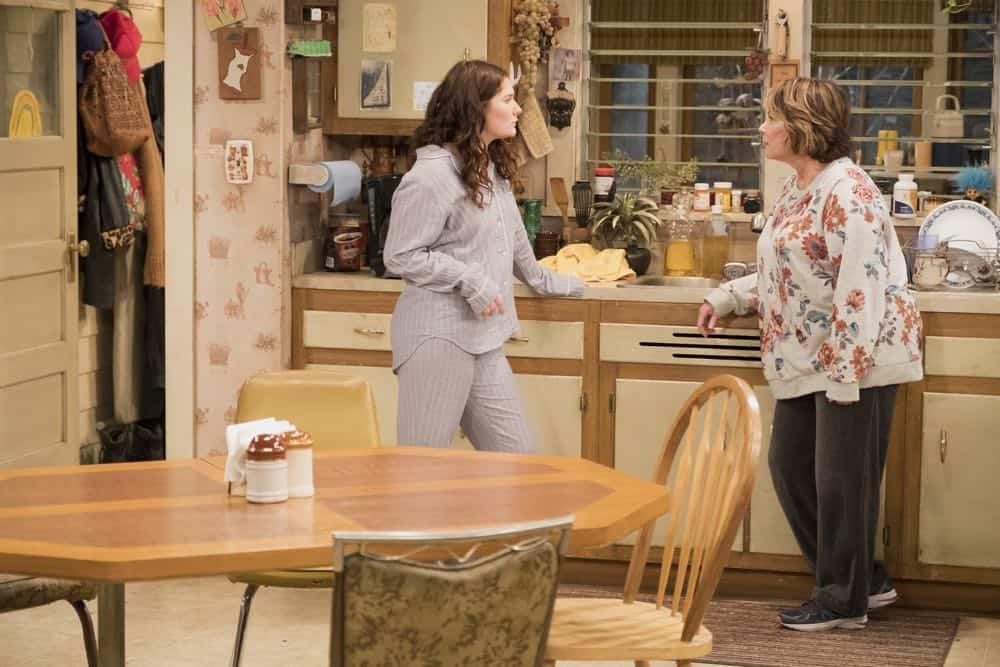 Roseanne Episode 3 Season 10 Roseanne Gets the Chair 22