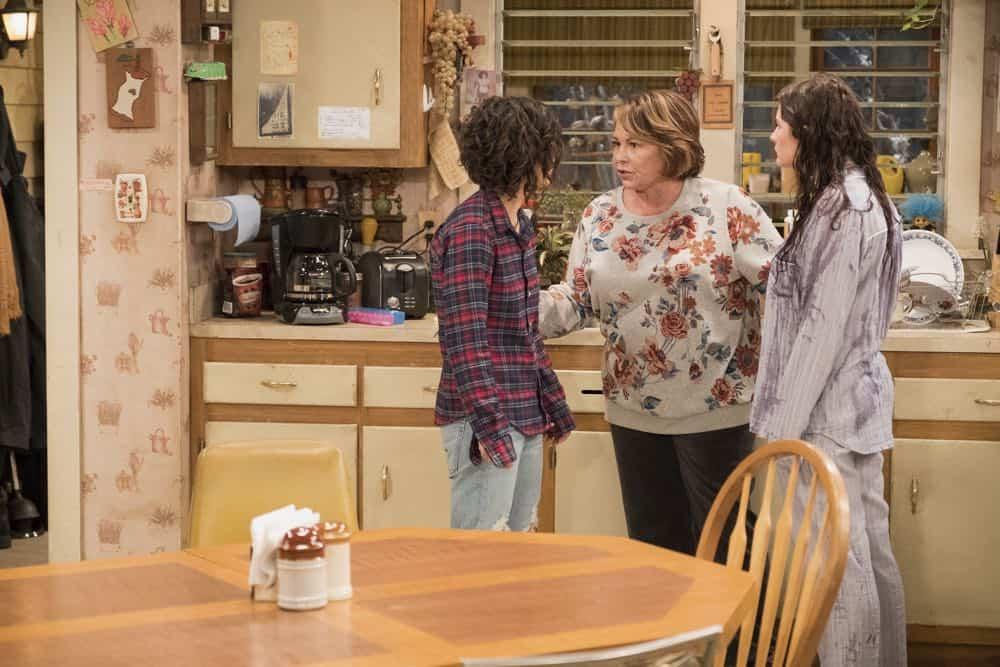Roseanne Episode 3 Season 10 Roseanne Gets the Chair 23