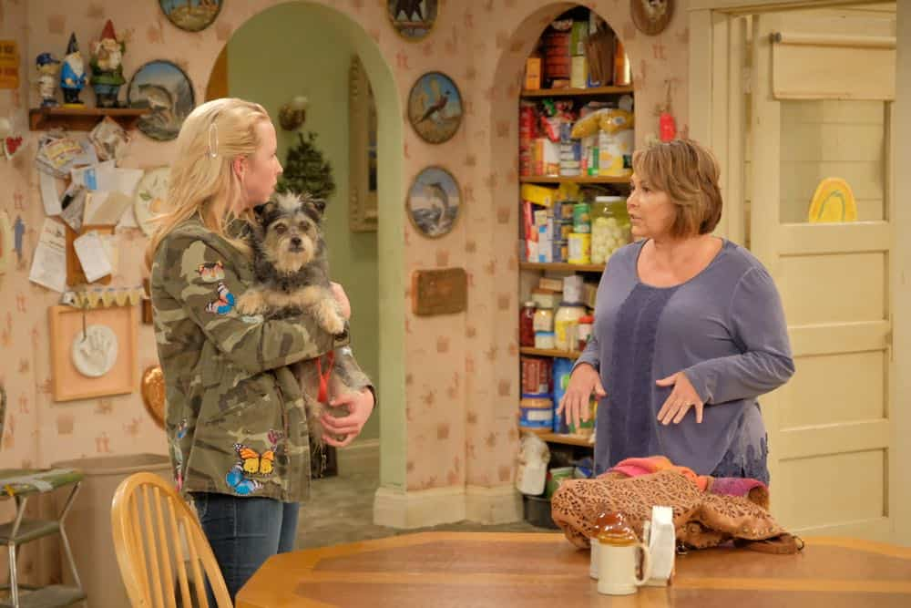 Roseanne Episode 4 Season 10 Eggs Over Not Easy 03