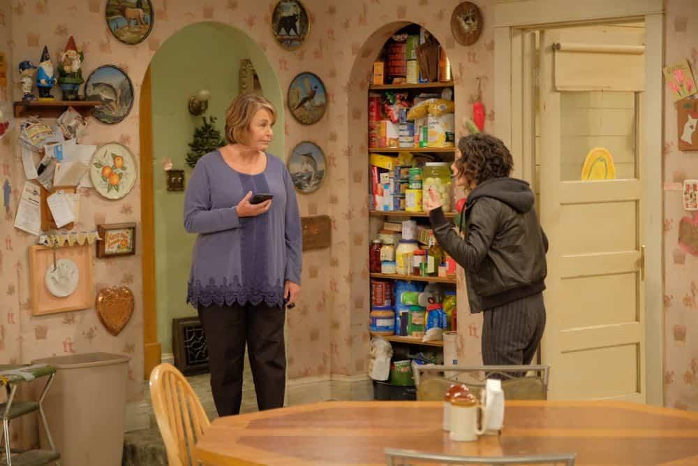 Roseanne Episode 4 Season 10 Eggs Over Not Easy 09