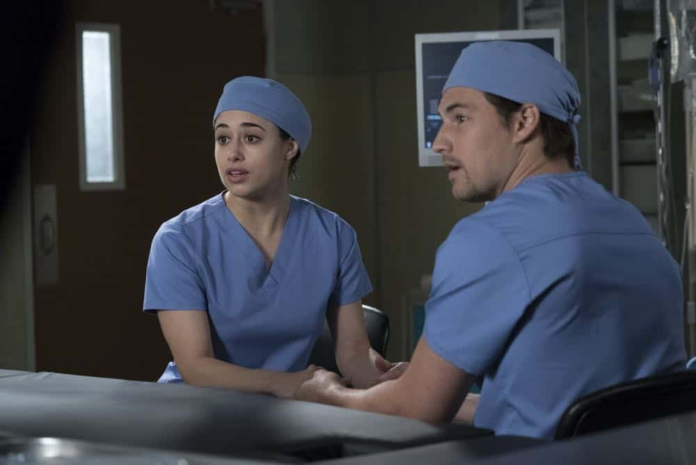Greys Anatomy Episode 19 Season 14 Beautiful Dreamer 04