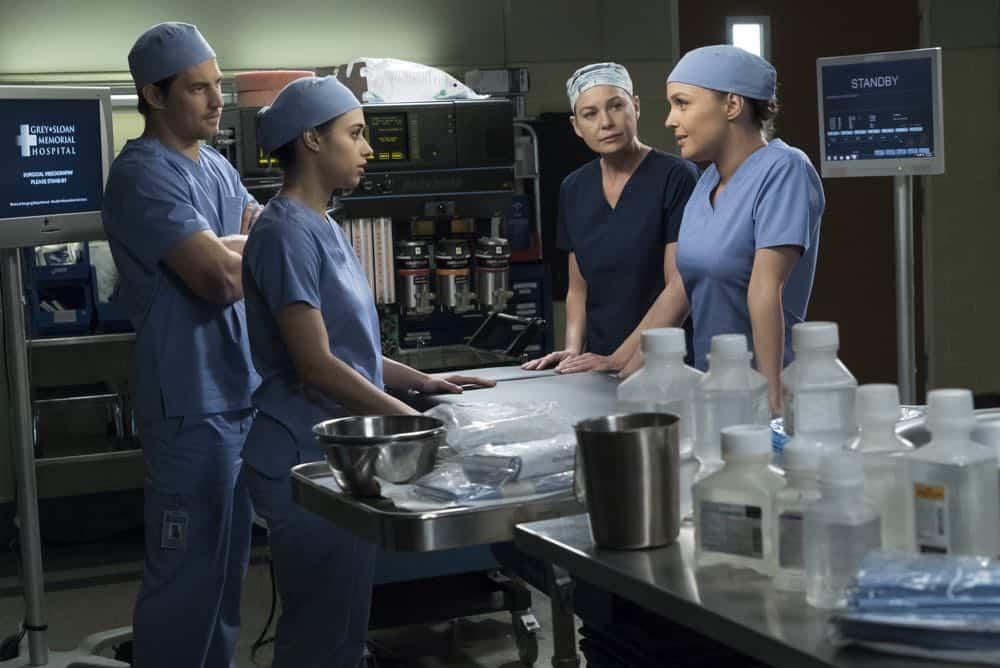 Greys Anatomy Episode 19 Season 14 Beautiful Dreamer 05