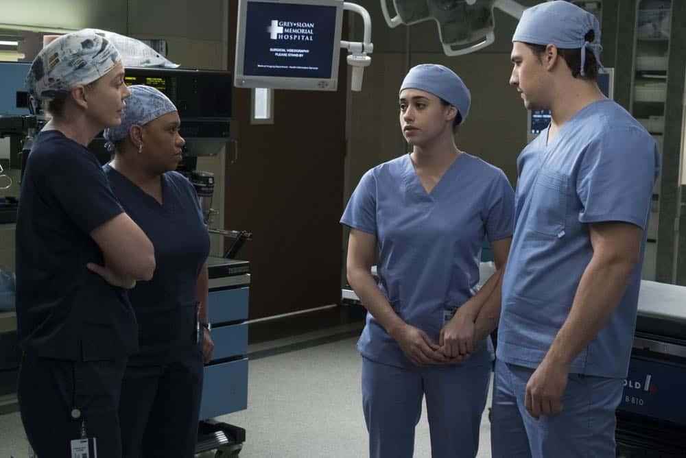 Greys Anatomy Episode 19 Season 14 Beautiful Dreamer 11