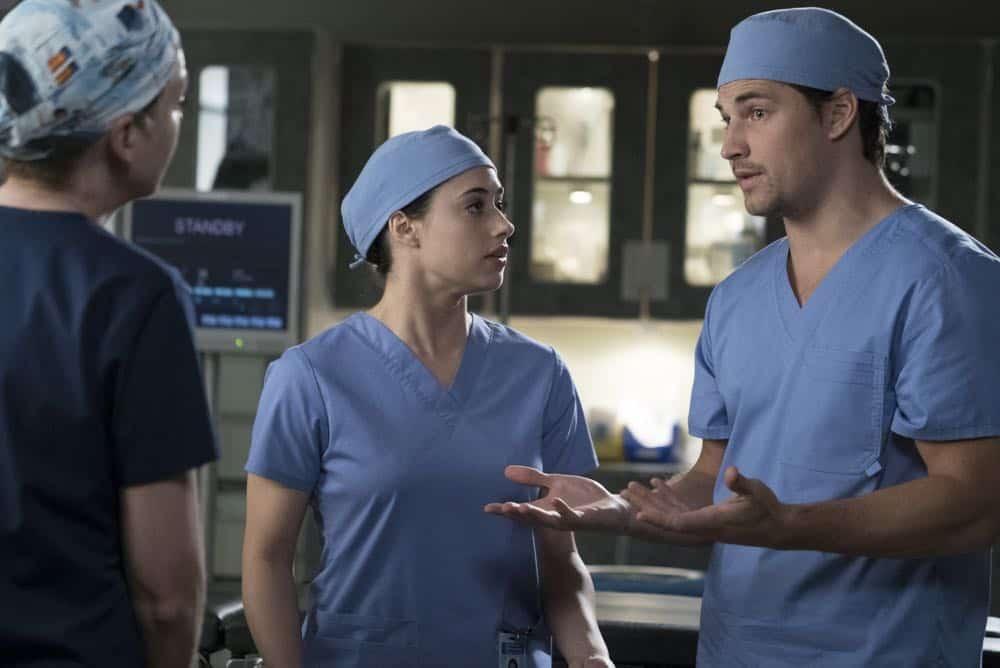 Greys Anatomy Episode 19 Season 14 Beautiful Dreamer 12