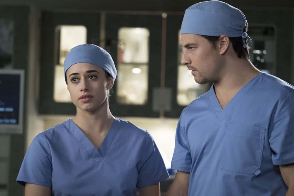 Greys Anatomy Episode 19 Season 14 Beautiful Dreamer 13