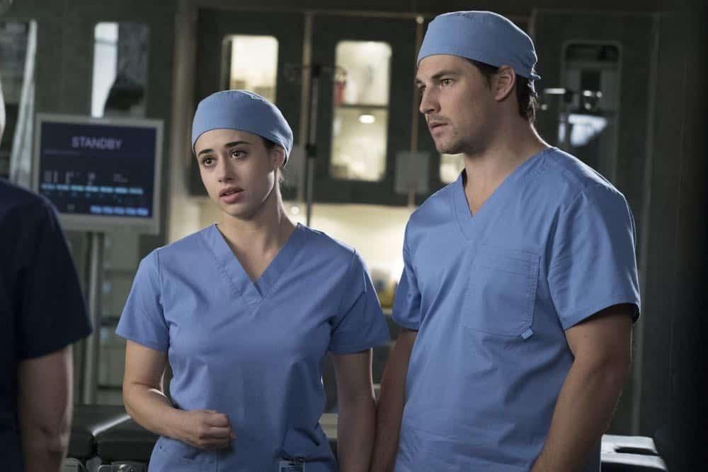 Greys Anatomy Episode 19 Season 14 Beautiful Dreamer 14