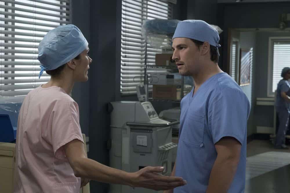 Greys Anatomy Episode 19 Season 14 Beautiful Dreamer 17