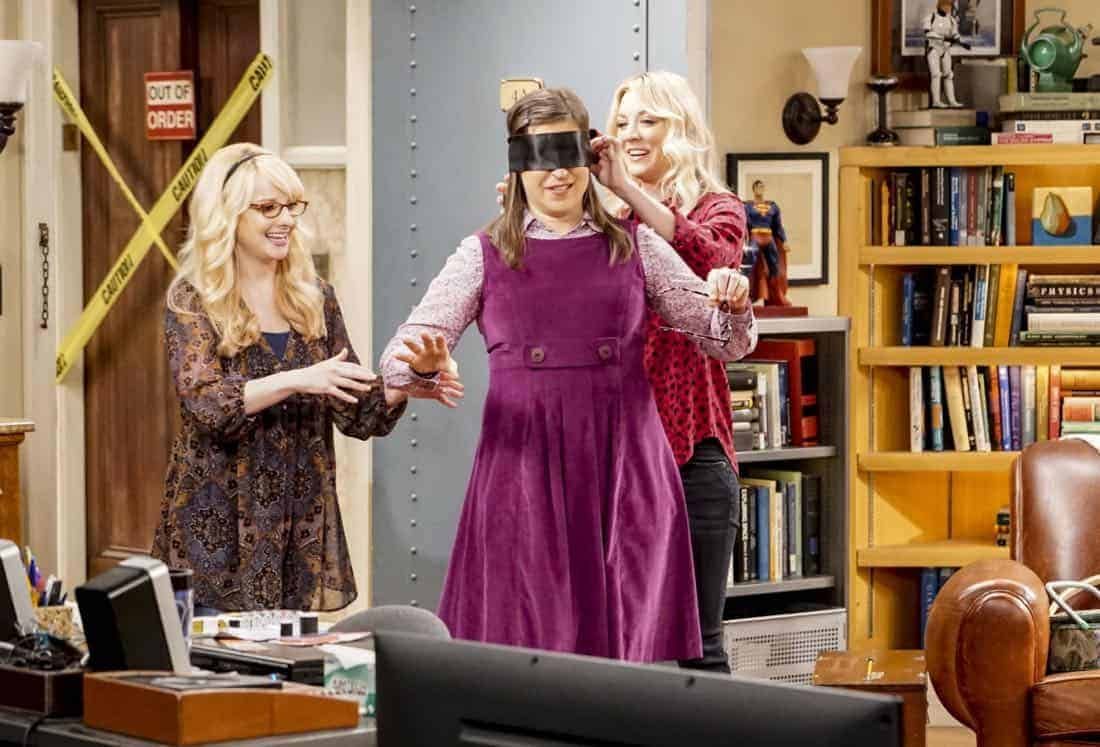 The Big Bang Theory Episode 20 Season 11 The Reclusive Potential 6