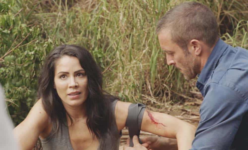 Hawaii Five 0 Episode 20 Season 8 12