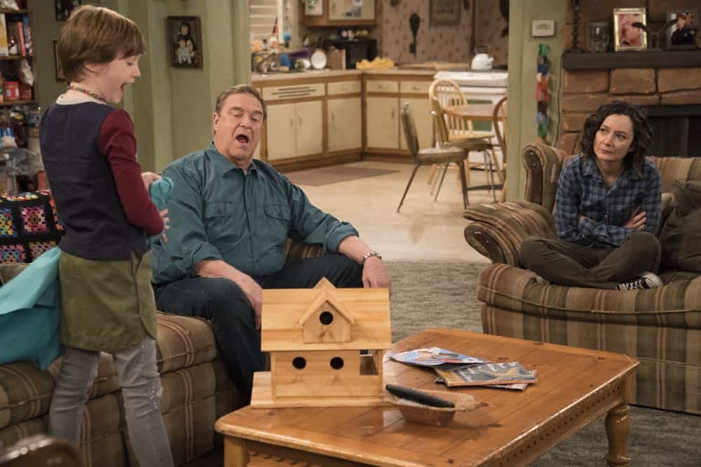 Roseanne Episode 6 Season 10 No Country for Old Women 21